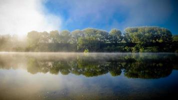 träd som reflekterar på vattenytan. sjön Karapiro, Nya Zeeland
