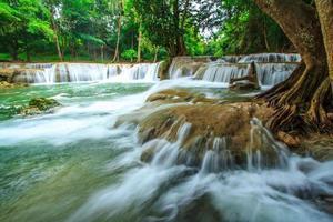 vattenfallsträd i Thailand foto