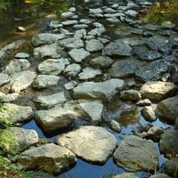 pierres, stenar, lit de rivière, flod, rochers, sto foto