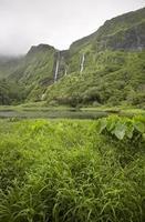 azores landskap i ön Flores. vattenfall i pozo da alagoin