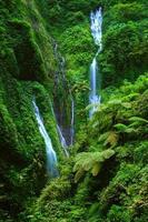 madakaripura vattenfall, östra java, indonesien foto