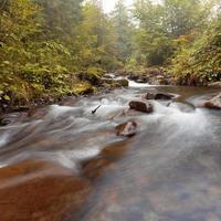 berg flod. dimmig morgon foto