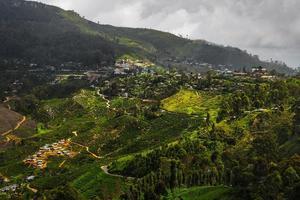 Sri Lanka ö foto