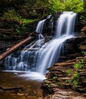 Shawnee Falls, vid Ricketts Glen State Park, Pennsylvania. foto