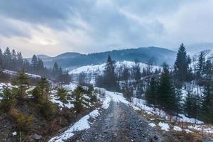 fantastiskt vinterlandskap. dramatisk mulen himmel.