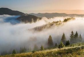 karpaterna. sluttningarna av bergen i en dimma.