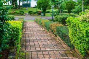 trappor vid spår i park