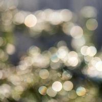 ljus festlig oskärpa bakgrund med vacker boke
