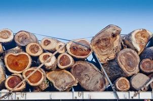 transport av stockar på en lastbil foto