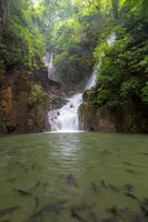tropisk vattenfall phlio foto
