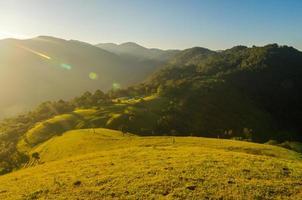 grönt fält och ljus sol foto