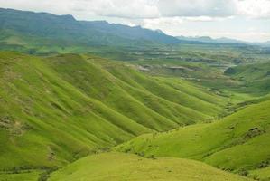 gröna berg