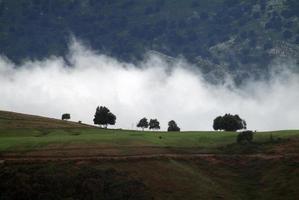 gebirge in wolken foto