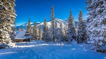 gammal trästuga i ett vinterberg foto