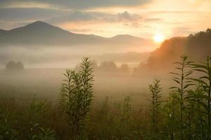 fredlig soluppgång foto