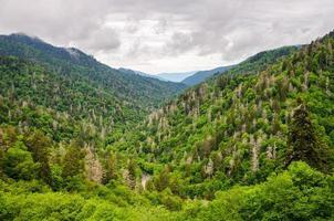 stor rökig berg nationalpark foto