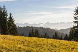 utsikt över tatras från gorce