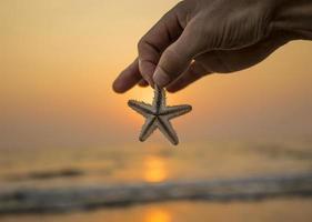 sjöstjärna i handen på stranden.