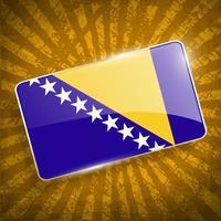Bosnien och Hercegovinas flagga med gammal konsistens. foto