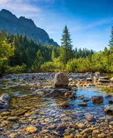 flod i höga tatras, slovakien foto