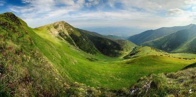 färgrik sommar i bergen.