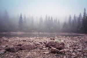 sjö vid Tatrabergen foto
