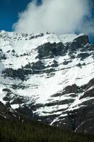 kanadensiska klippor, lavinspår, banff nationalpark foto