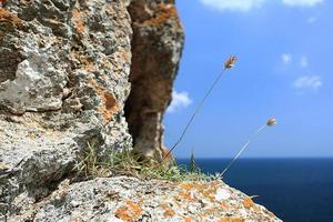 stenblock havet sommarberg foto