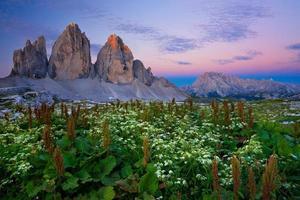 tre cime di lavaredo (drei zinnen) soluppgång - Dolomiterna, Italien