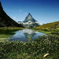 schweiziska Alperna foto