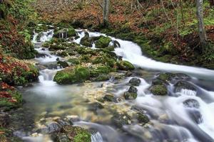 bergflod på senhösten foto