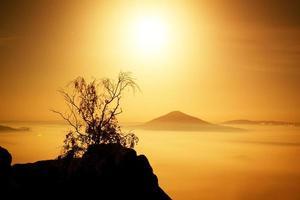 ö med träd. sandstenberg ökade från dimmigt hav