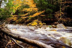 brusande flod omgiven av höstlövverk