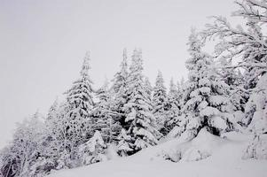 vackra berg i Centraleuropa