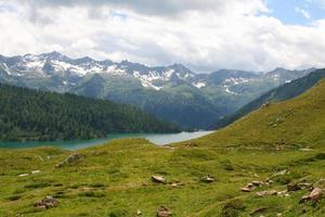 schweiziska Alperna