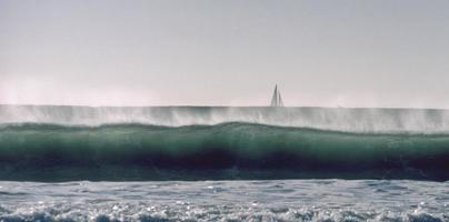 surfa och segla