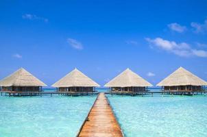 Maldiverna brygga med underbar tropisk strand foto