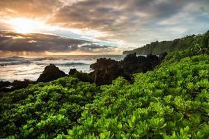 soluppgång i tropiskt paradis foto