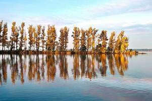 höstträd med reflektion i en sjö foto