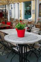 söt liten krukväxt på utomhusbordet. foto