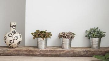dekorativa växter i krukorna och en vas foto