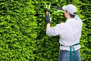 trädgårdsmästare på jobbet