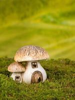 gnome hus paddstolar foto