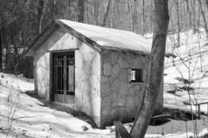 pumphus på vintern foto