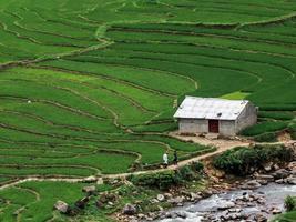 hus i risfälten