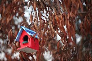färgrikt fågelhus på torrt träd foto