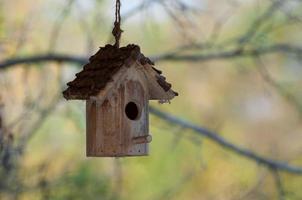 gammalt fågelhus som hänger bland grenar