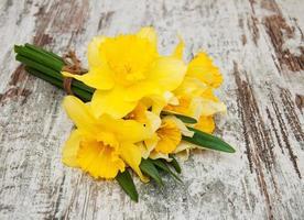 gula påskliljor foto