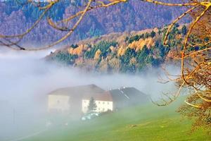 bondgård på en dimmig dag foto