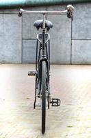 holländsk cykeltransport foto